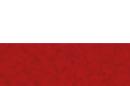flag_pl